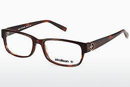 Eyewear Strellson Gazebo (ST1252 550) - Brown, Havanna