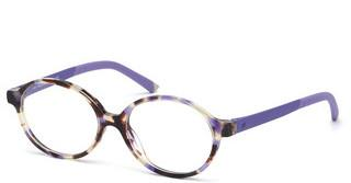 Web Eyewear WE5310 55A