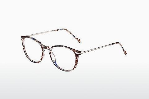 Eyewear Morgan 206004 3100