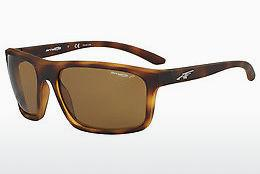Ophthalmics Arnette SANDBANK (AN4229 215283) - Brown, Havanna