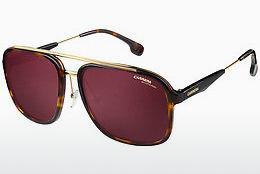 Ophthalmics Carrera CARRERA 133/S 2IK/W6 - Gold, Brown, Havanna