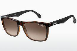 Ophthalmics Carrera CARRERA 5041/S 2OS/HA - Black, Brown, Havanna