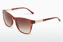 Ophthalmics Comma 77057 60 - Orange, Brown