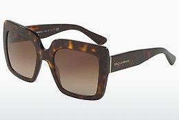 Ophthalmics Dolce & Gabbana DG4310 502/13 - Brown, Havanna