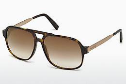 Ophthalmics Dsquared DQ0203 52F - Brown, Dark, Havana