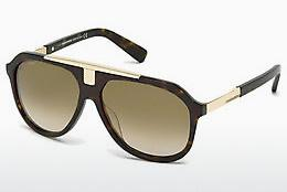 Ophthalmics Dsquared DQ0206 52P - Brown, Havanna