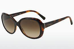 Ophthalmics Giorgio Armani AR8047 504913 - Black, Brown, Havanna