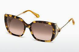 Ophthalmics Roberto Cavalli RC1058 53F