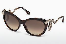 Ophthalmics Roberto Cavalli RC889S 50F - Brown