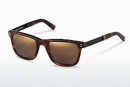 Ophthalmics Rocco by Rodenstock RR322 H - Black, Brown, Havanna