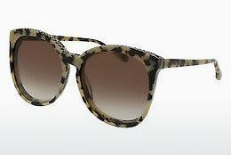 Ophthalmics Stella McCartney SC0074S 003 - Brown, Havanna