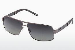 Ophthalmics Strellson Riley (ST2010 250) - Gunmetal
