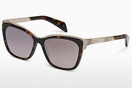 Ophthalmics Ted Baker 1482 145