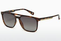 Ophthalmics Ted Baker 1494 173