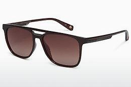 Ophthalmics Ted Baker 1494 200