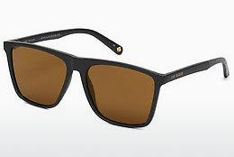 Ophthalmics Ted Baker 1502 011