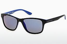 Ophthalmics Timberland TB9089 91D - Blue, Matt