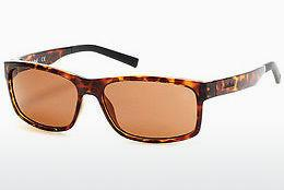 Ophthalmics Timberland TB9104 52H - Brown, Dark, Havana