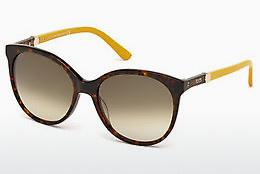 Ophthalmics Tod's TO0174 52F - Brown, Dark, Havana