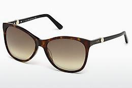 Ophthalmics Tod's TO0175 52F - Brown, Dark, Havana
