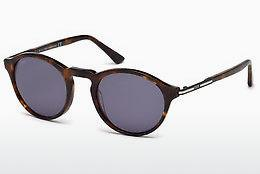Ophthalmics Tod's TO0179 52V - Brown, Dark, Havana