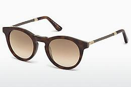 Ophthalmics Tod's TO0188 56F - Havanna