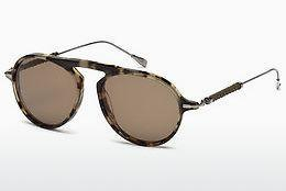 Ophthalmics Tod's TO0205 56E - Havanna
