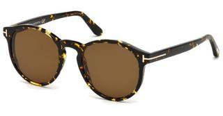Tom Ford FT0591 52M roviex polarisierendhavanna dunkel