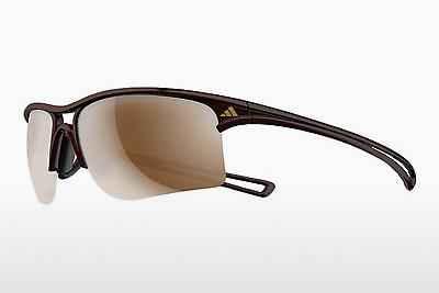 Ophthalmics Adidas Raylor L (A404 6053) - Brown