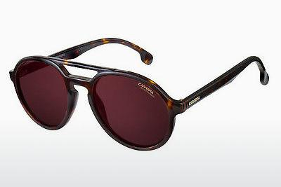Ophthalmics Carrera CARRERA PACE 086/W6 - Brown, Havanna