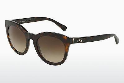 Ophthalmics Dolce & Gabbana DG4249 502/13 - Brown, Havanna