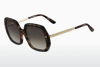 Ophthalmics Etro ET634S 238 - Brown, Havanna