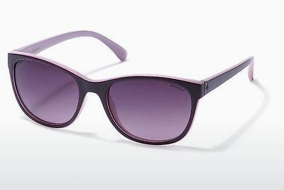 Ophthalmics Polaroid P8339 C6T/JR - Purple
