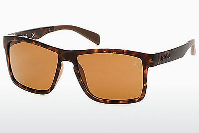Ophthalmics Timberland TB9081 52H - Brown, Havanna