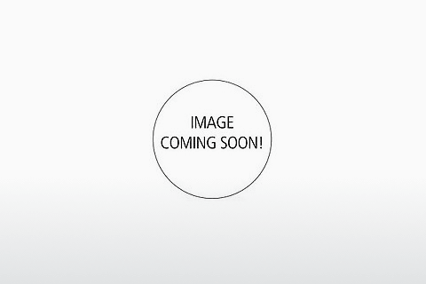 Ophthalmics Superdry SDS Rookie 104