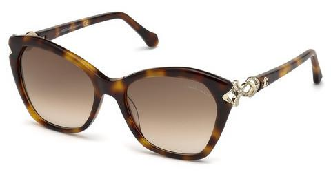 Ophthalmics Roberto Cavalli RC1077 52F
