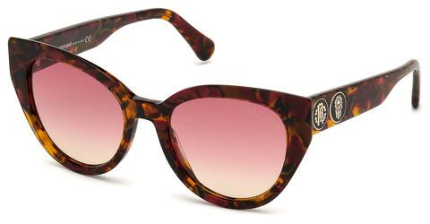 Ophthalmics Roberto Cavalli RC1129 54T